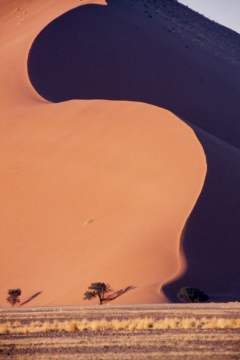 Curved Red Dune