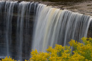 Goldenrod and Waterfall