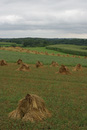 Haystacks by Horse